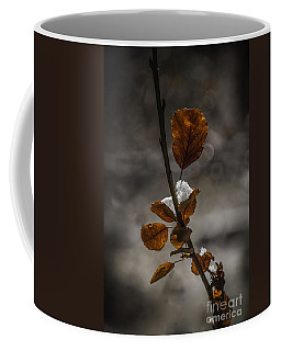 A Touch Of Snow Coffee Mug by Mitch Shindelbower