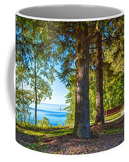A View To Share Coffee Mug by James  Meyer