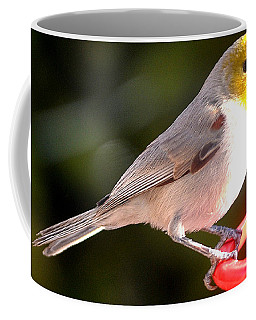 A Visiting Chick Coffee Mug