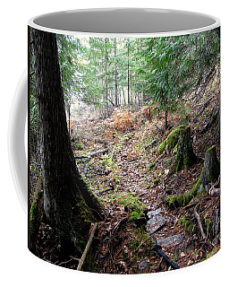A Walk In The Forest Coffee Mug