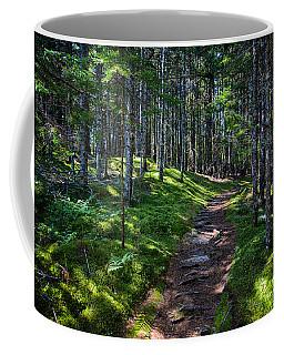 A Walk In The Woods Coffee Mug by John Haldane