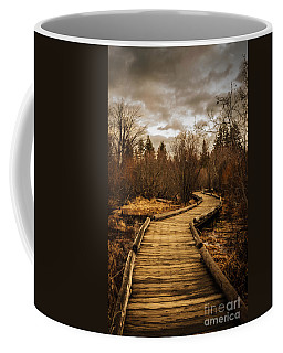 Coffee Mug featuring the photograph A Walk In The Woods by Mitch Shindelbower