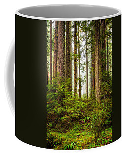 Coffee Mug featuring the photograph A Walk Inthe Forest by Ken Stanback