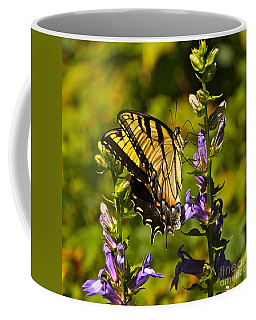 A Warm September Day In The Garden Coffee Mug
