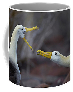 A Wave Albatross Couple In A Courtship Coffee Mug