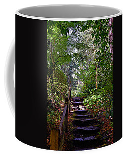 A Wooded Path Coffee Mug