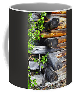Coffee Mug featuring the photograph Abandoned  by Cathy Mahnke