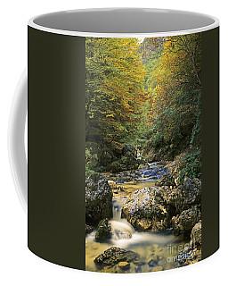 Abruzzo National Park In Italy Coffee Mug