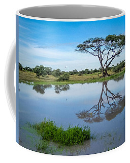Acacia Tree Coffee Mug