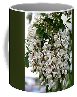 Acacia Tree Flowers Coffee Mug