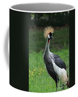 African Crowned Crane #3 Coffee Mug