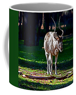 Addax Coffee Mug by Miroslava Jurcik