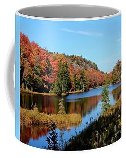 Adirondack Splendor Coffee Mug