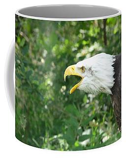 Coffee Mug featuring the photograph Adler Raptor Bald Eagle Bird Of Prey Bird by Paul Fearn