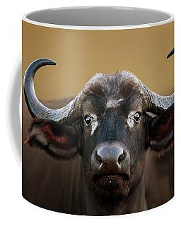 African Buffalo Cow Portrait Coffee Mug