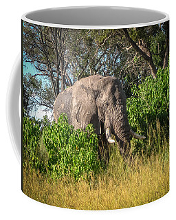 African Bush Elephant Coffee Mug