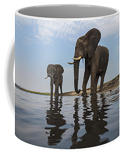 Coffee Mug featuring the photograph African Elephant Bulls Along Chobe by Vincent Grafhorst