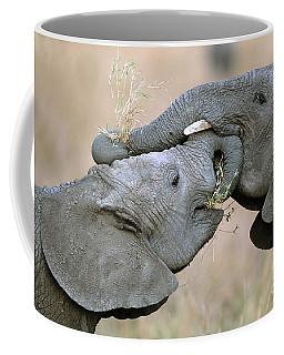African Elephant Calves Playing  Coffee Mug