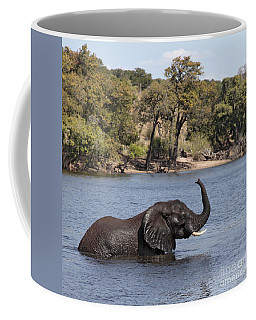 Coffee Mug featuring the photograph African Elephant In Chobe River  by Liz Leyden