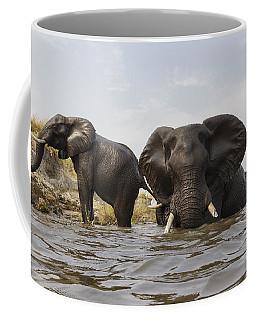 African Elephants In The Chobe River Coffee Mug
