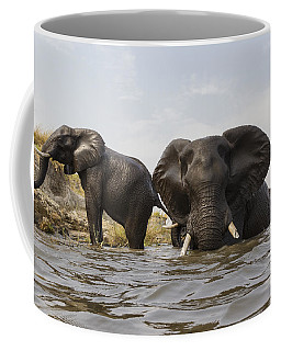 Coffee Mug featuring the photograph African Elephants In The Chobe River by Vincent Grafhorst