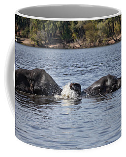 Coffee Mug featuring the photograph African Elephants Swimming In The Chobe River Botswana by Liz Leyden