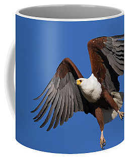 African Fish Eagle Coffee Mug