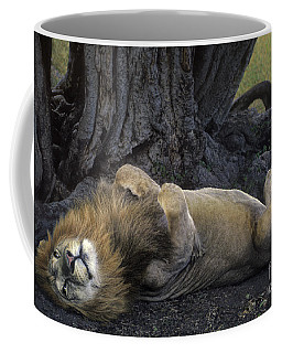 Coffee Mug featuring the photograph African Lion Panthera Leo Wild Kenya by Dave Welling