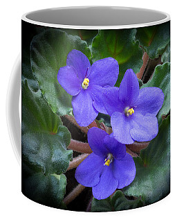African Violet Coffee Mug by Kenneth Cole