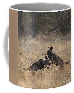 Coffee Mug featuring the photograph African Wild Dogs Play-fighting by Liz Leyden