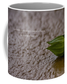 After A Storm Coffee Mug by Anne Rodkin
