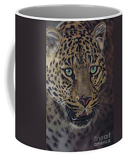 After Dark All Cats Are Leopards Coffee Mug