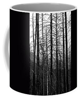After The Fire Coffee Mug by Joe Kozlowski