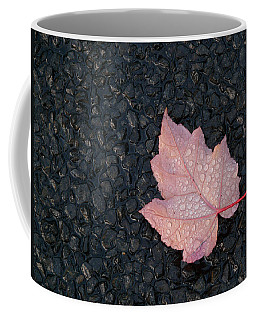 After The Rain Coffee Mug by Evelyn Tambour