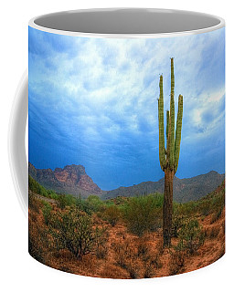Coffee Mug featuring the photograph After The Rain by Tam Ryan
