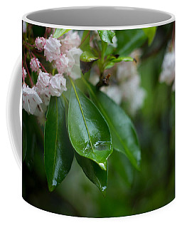 After The Storm Coffee Mug by Patrice Zinck