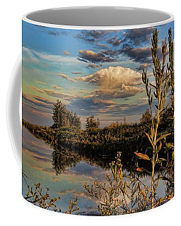 Late Afternoon In The Mead Wildlife Area Coffee Mug