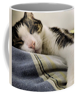 Coffee Mug featuring the photograph Afternoon Nap by Robyn King