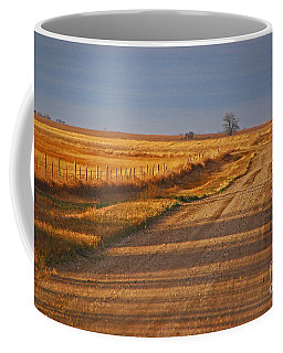 Afternoon Shadows Coffee Mug