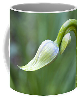 Agapanthus Buds Coffee Mug