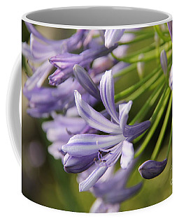Agapanthus Flower Close-up Coffee Mug