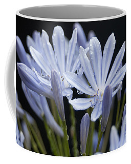 agapanthus Flower Coffee Mug