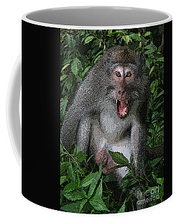 Coffee Mug featuring the photograph  Aggressive Monkey From Bali by Sergey Lukashin