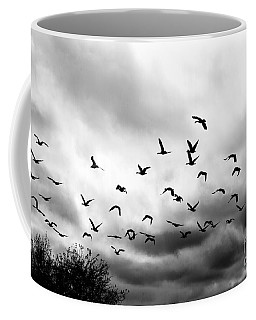 Ahead Of The Storm Coffee Mug