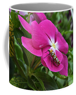 Coffee Mug featuring the photograph Ailanthus Webworm Moth Visiting My Garden by Verana Stark