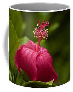 Akalewa Coffee Mug