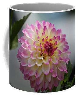 Ala Mode Coffee Mug by Jeanette C Landstrom