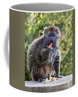 Alaotran Gentle Lemur Coffee Mug