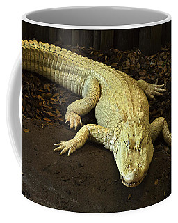 Albino Alligator Coffee Mug