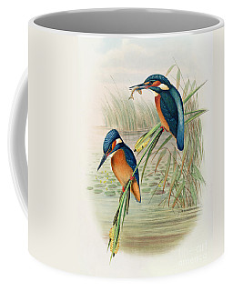 Alcedo Ispida Plate From The Birds Of Great Britain By John Gould Coffee Mug